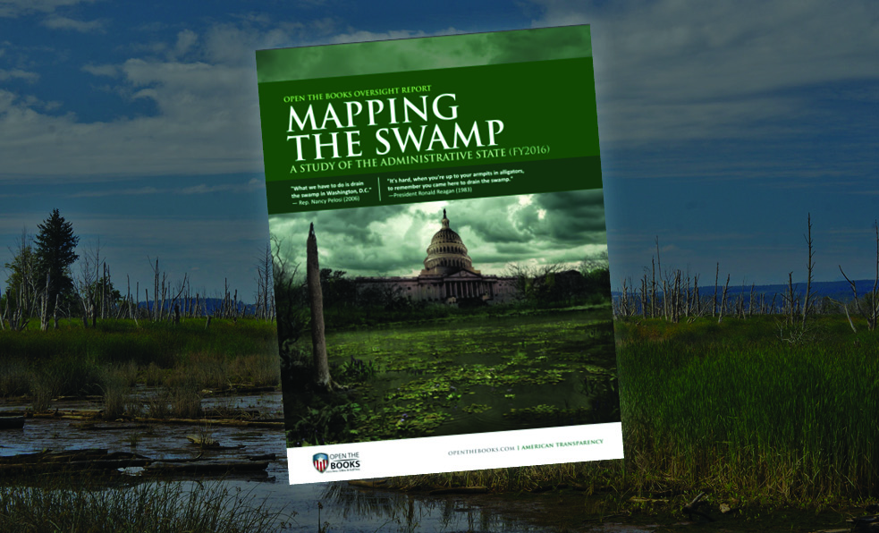 74_mapping_the_swamp