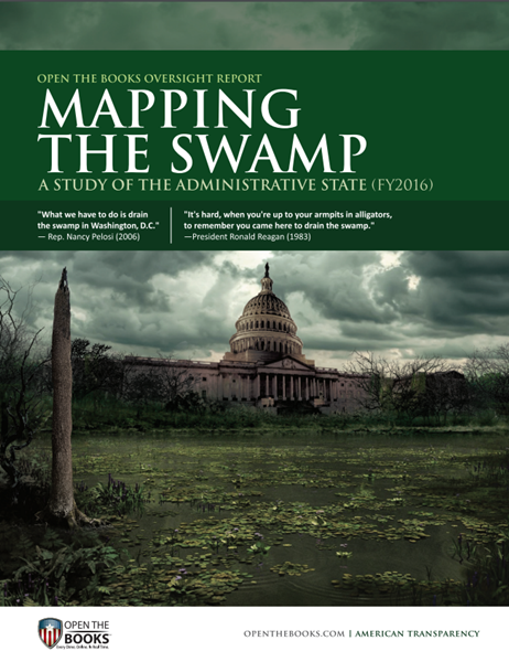 Mapping_The_Swamp_Cover